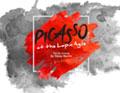 picasso-logo-120×93